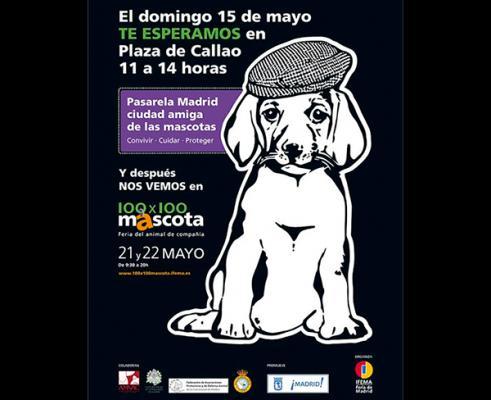 100x100 mascota celebra san isidro con actividades para promover el respeto a los animales