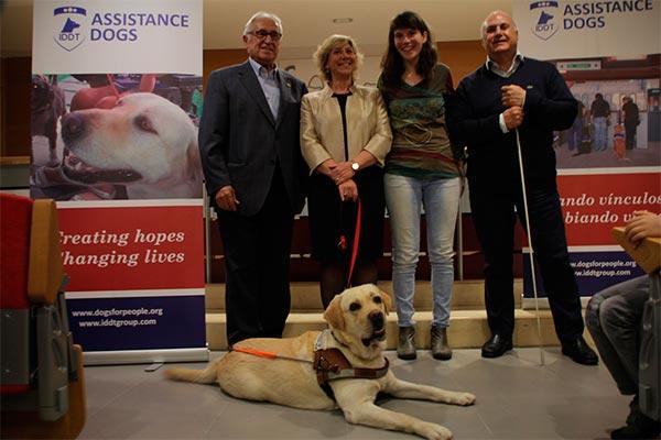 el cov de barcelona acoge la entrega del primer perro guia para la asociacion discapacidad visual cataluna