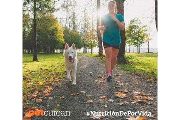 la mejor manera de ayudar a tu mascota a mantener un peso saludable