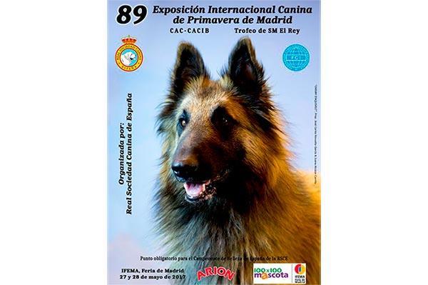 la real sociedad canina de espana organiza la 89 exposicion internacional canina de primavera