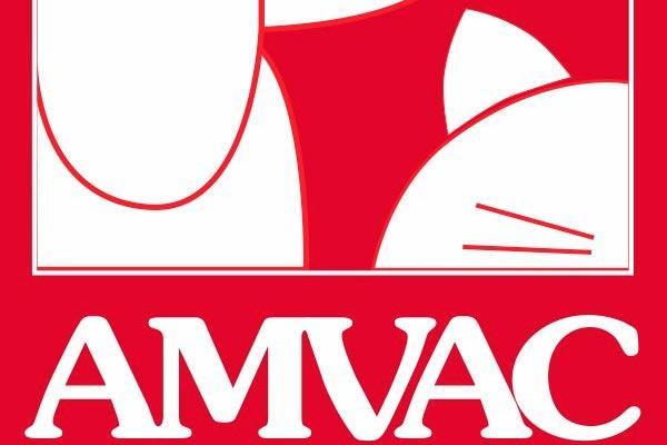 amvac en espana existe una mayor tributacion por el cuidado de nuestras mascotas que la fiesta y las copas