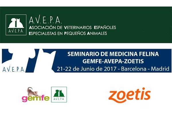 barcelona y madrid albergaran el proximo seminario de medicina felina de zoetis