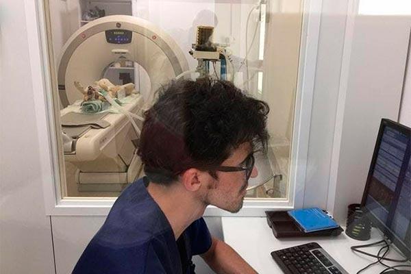 el hospital veterinari de catalunya adquiere un nuevo tac para su infraestructura mdica