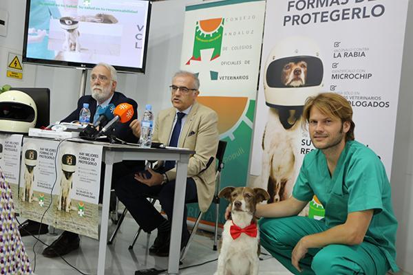 nueva campaa de tenencia responsable del consejo andaluz de colegios oficiales de veterinarios