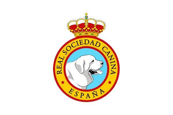 la real sociedad canina de espaa presenta sus alegaciones ante el proyecto de la comunidad de madrid