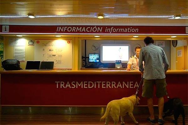 trasmediterranea incorpora un sistema de seguimiento de mascotas a bordo