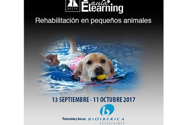 avepa anuncia un curso online de rehabilitacion y fisioterapia en pequenos animales