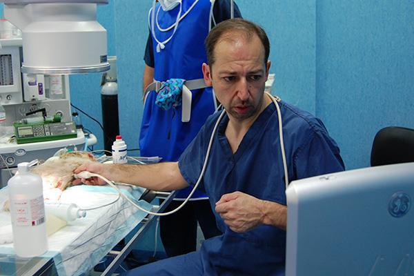 la cardiologa es una especialidad en expansin an tiene un amplio recorrido