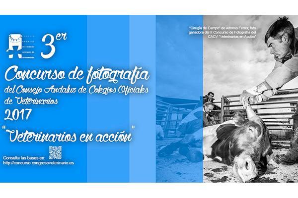 convocado el iii concurso de fotografia veterinarios en accion del consejo andaluz de covs
