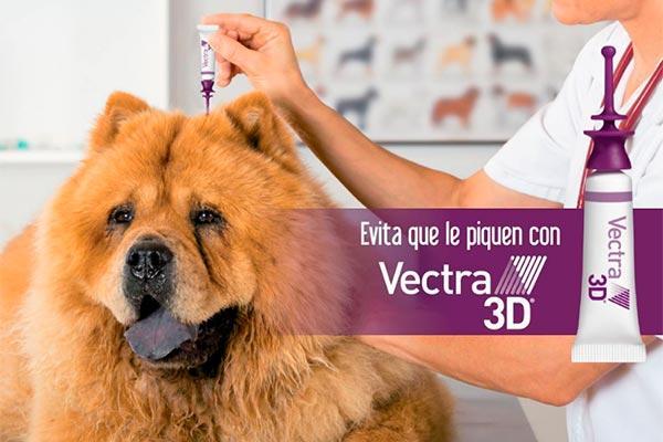 la eficacia de vectra 3d para evitar la picadura de los flebtomos en perros expuestos verificada en diferentes estudios