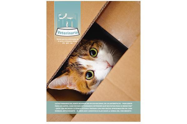 especial medicina felina en el nuevo numero de im veterinaria