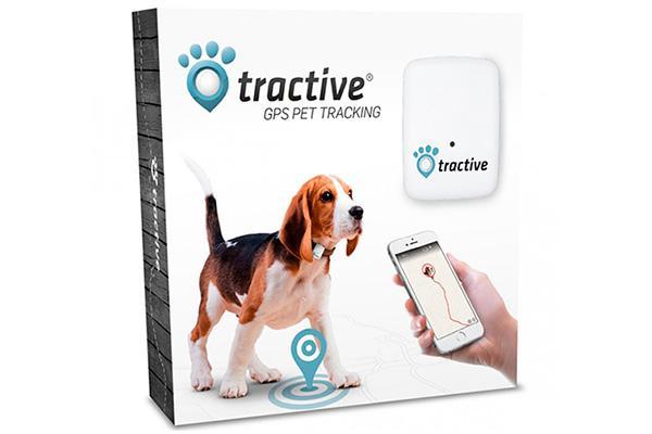 tractive gps el rastreador a tiempo real para tu mejor amigo
