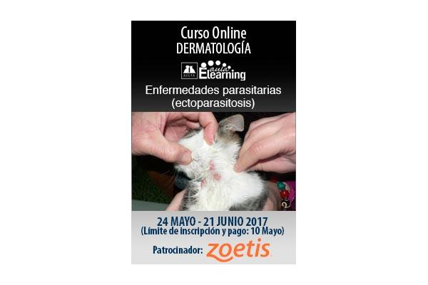 zoetis apoya la plataforma de avepa aula elearning de formacin en parasitologa y dermatologa