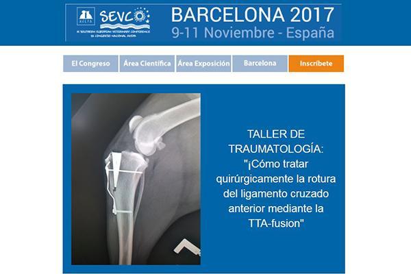avepasevc acoge el taller cmo tratar quirrgicamente la rotura del ligamento cruzado anterior mediante la ttafusion