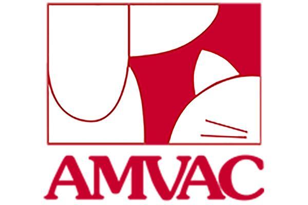dermatologa y oftalmologa temas centrales delnbspxxxvnbspcongreso anual de vetmadrid