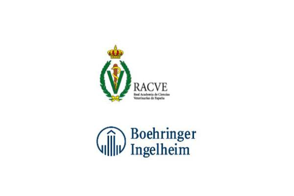 sigue abierta la convocatoria delnbsppremio boehringer ingelheimnbspa la divulgacion cientifica de la racve