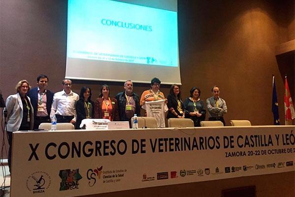 el x congreso de veterinarios de cyl reclama un trato de igualdad con los profesionales sanitarios