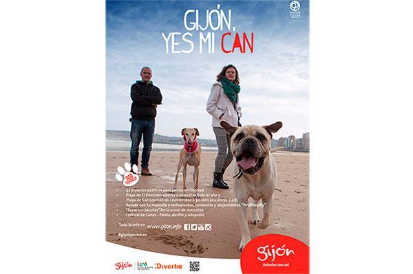 gijon mejor destino de espana dogfriendly del ano 2017
