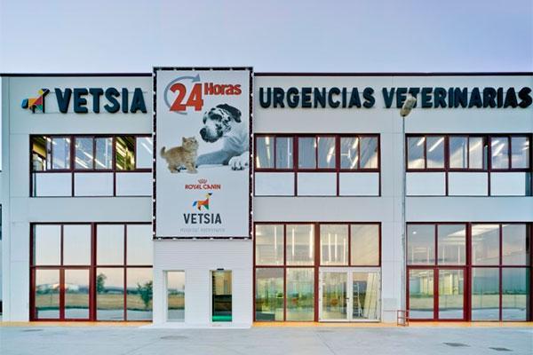 el hospital veterinario vetsia amplia su equipo de direccion