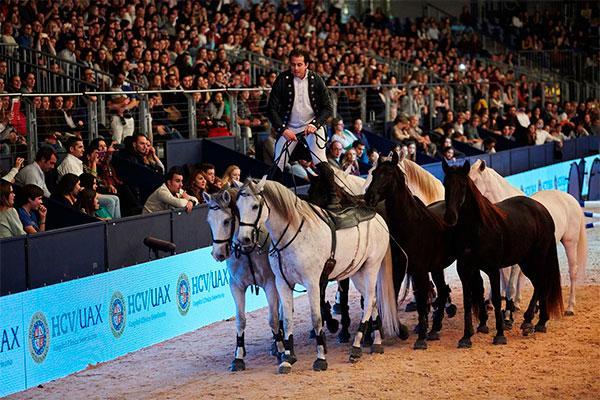 madrid horse week tambien se ocupa de prevenir las lesiones de los messi de la hipica