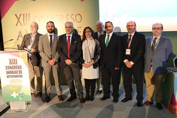 el xiii congreso andaluz de veterinarios reunio a mas de 700 especialistas en animales de compania