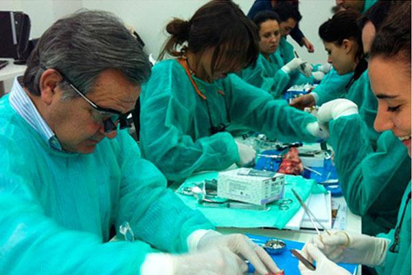 cientfica y tecnolgicamente estamos al mismo nivel que la odontologa humana