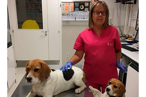 nos proponemos impulsar el conocimiento cientfico y promover la profesionalidad de los veterinarios