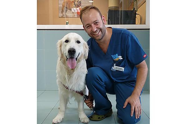 la medicina preventiva es mucho mejor para el animal y mucho mas barato para el bolsillo del propietario