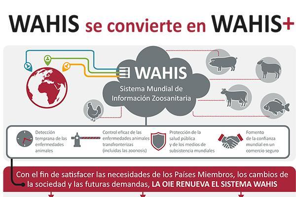 el sistema whais se transforma en whais