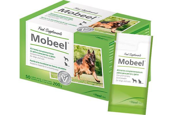 mobeel la ayuda para la movilidad de las mascotas
