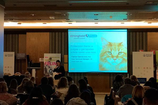 zoetis presenta la pipeta antiparasitaria para gatos stronghold plus