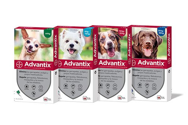bayer renueva el packaging de advantix