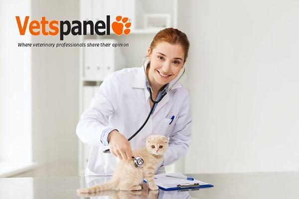 vetspanel ofrece una radiografa en profundidad de la profesin veterinaria