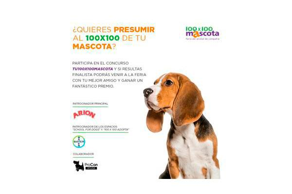 vuelve el concurso tu 100x100 mascota