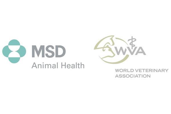 msd-animal-health-y-
