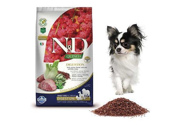 farmina incorpora quinoa en la alimentacin canina