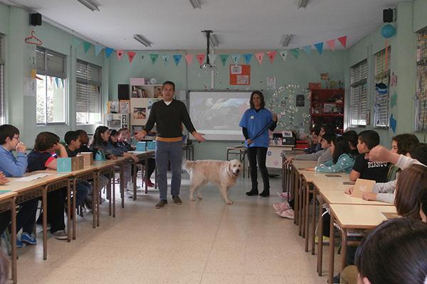 el cov de asturias vela por el bienestar animal y la tenencia responsable de mascotas