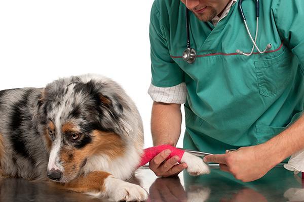 bursitis de codo remedios y consejos para prevenirla