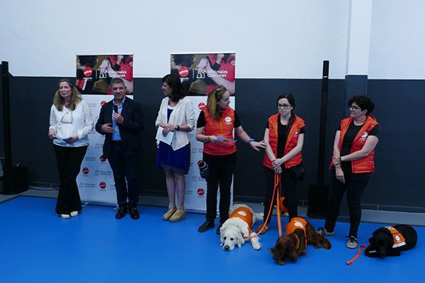 fundacin affinity y la escuela barcelonesa lle xiii llevan a cabo una terapia con perros para prevenir el bulling