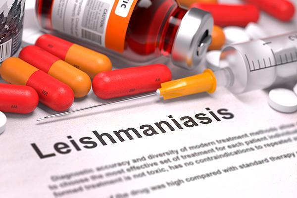 identificacin de inhibidores enzimticos con actividad antiprotozoaria frente a leishmania