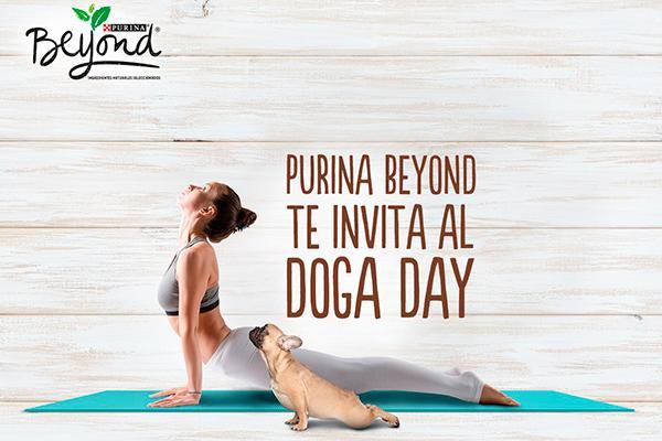 no te pierdas la mayor master class de yoga con perros de espana