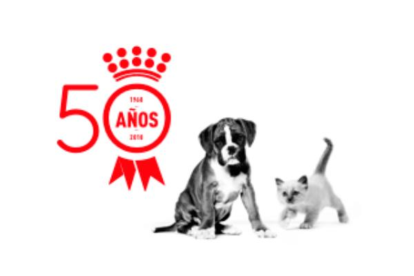 royal canin medio siglo al servicio de la salud de gatos y perros