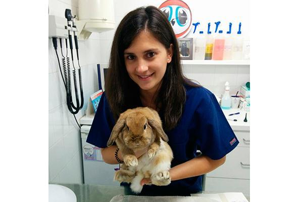la veterinaria de animales exticos es una especialidad muy amplia que requiere conocer la medicina de un enorme nmero de especies