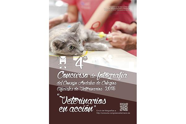 el cacov convoca el iv concurso de fotografia veterinarios en accion