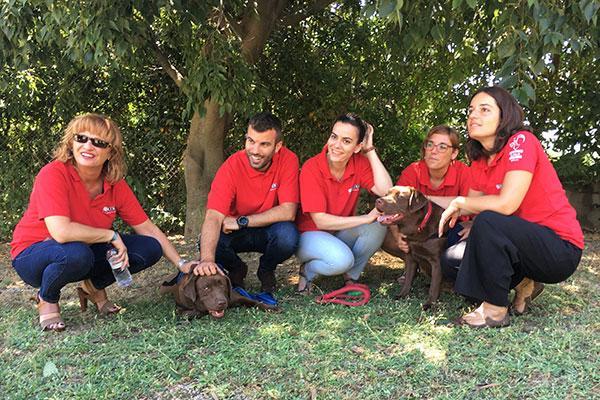 el proyecto guau convierte a moka y a tana en perros de terapia