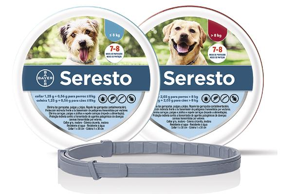 serestosupsup recibe la indicacion para la leishmaniosis canina