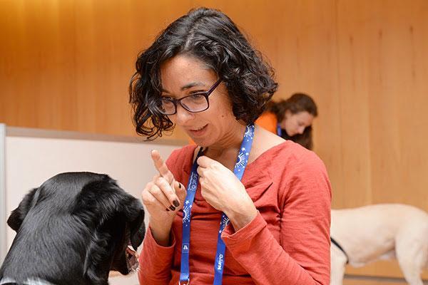 avepa organiza un taller para ayudar a los propietarios tras la adopcion de un perro