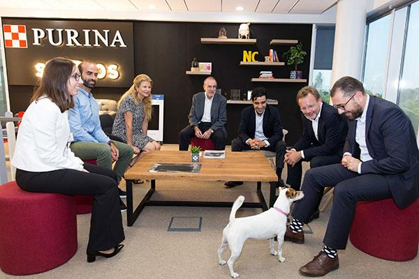 nestl purina presenta el programa pets at work a importantes empresas