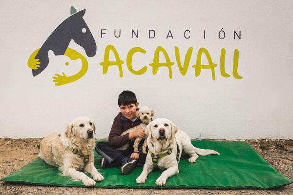 acavall es un homenaje a nuestros inicios pero queremos convivir con todas las especies susceptibles de ayudar