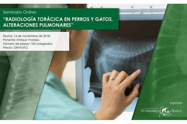 la radiologia toracica centrara el proximo seminario online de colvet sevilla